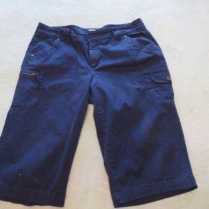 Blue Capris 18W